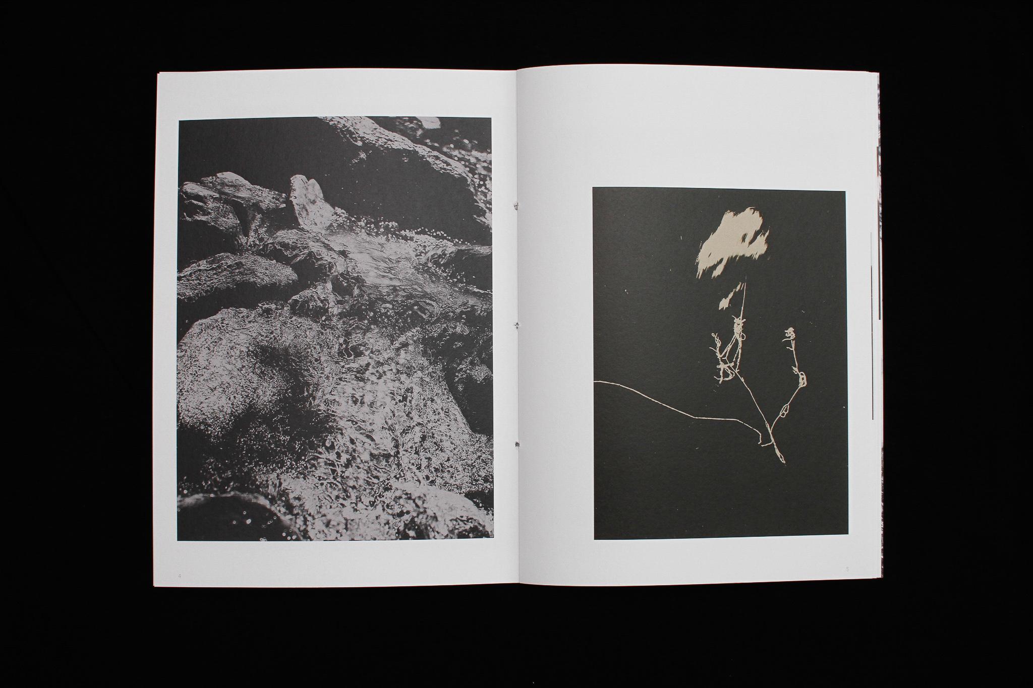 STUDIO JORD NOORBEEK Fotoboek Pebble – Paulien Menzel